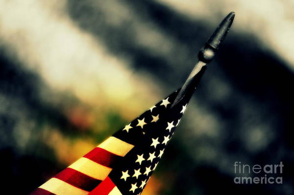 Photograph - Land Of The Free - 2 by Susanne Van Hulst