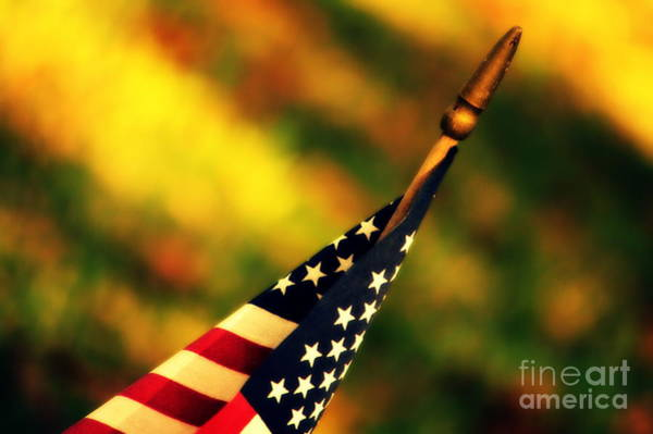 Photograph - Land Of The Free by Susanne Van Hulst