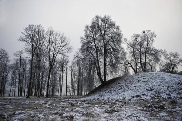 Photograph - Land Of Vikings by Randi Grace Nilsberg