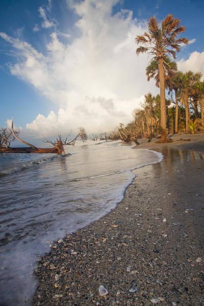 Photograph - Land Sea Air by Doug McPherson