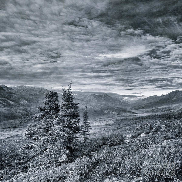 Tundra Wall Art - Photograph - Land Shapes 18 by Priska Wettstein