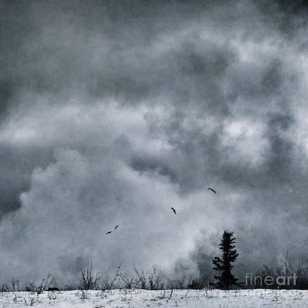 Wintry Photograph - Land Shapes 5 by Priska Wettstein