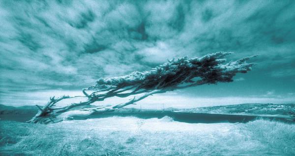 Furon Photograph - Lands End by Daniel Furon