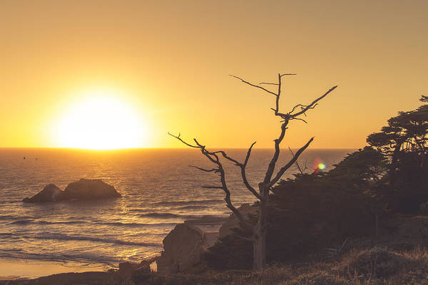 Photograph - Lands End by Lee Harland