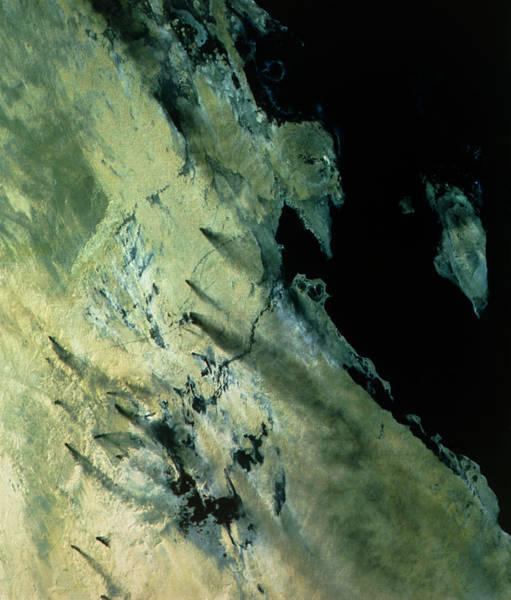 Bahrain Photograph - Landsat Image Of An Oilfield In Eastern Saudi. by Nigel Press Association/science Photo Library