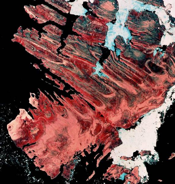 Isla Wall Art - Photograph - Landsat Image Of Bathurst Island by Mda Information Systems/science Photo Library