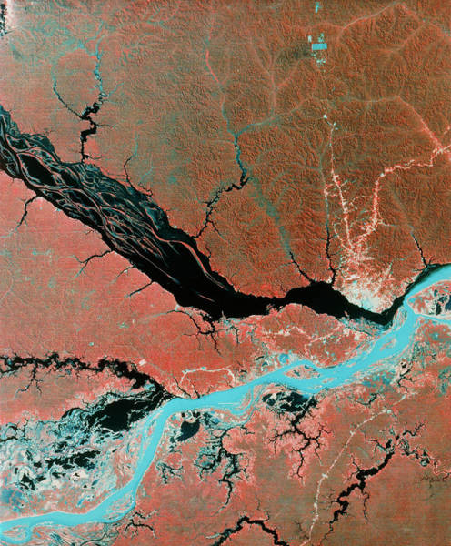 Wall Art - Photograph - Landsat Image Of Confluence Of Amazon & Rio Negro by Mda Information Systems/science Photo Library
