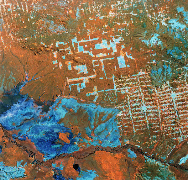 Imagery Photograph - Landsat Image Of Deforestation In Brazil by Nasa/science Photo Library