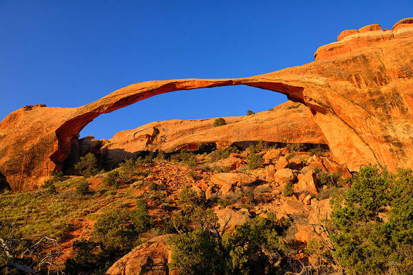 Photograph - Landscape Arch by Greg Norrell