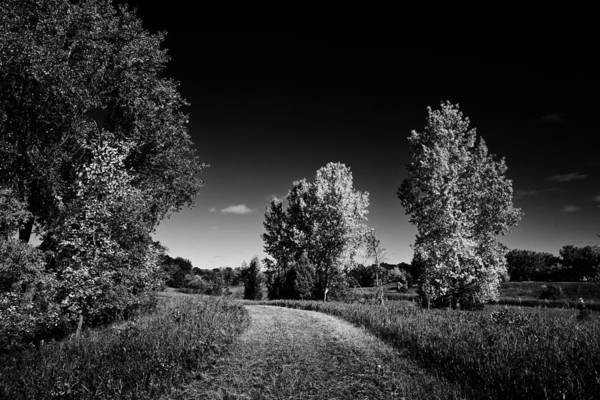 Wall Art - Photograph - Landscape Fall Scenic With Foot Path Bw by Donald  Erickson