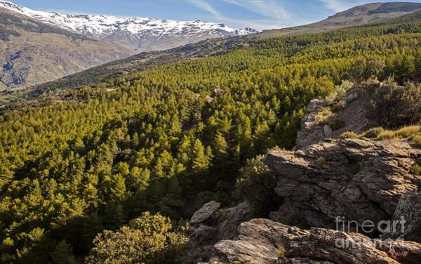 Southern Uplands Wall Art - Photograph - Landscape Of Sierra Nevada Mountains In The High Alpujarras Near Capileira Granada Province Spain by Ian Murray