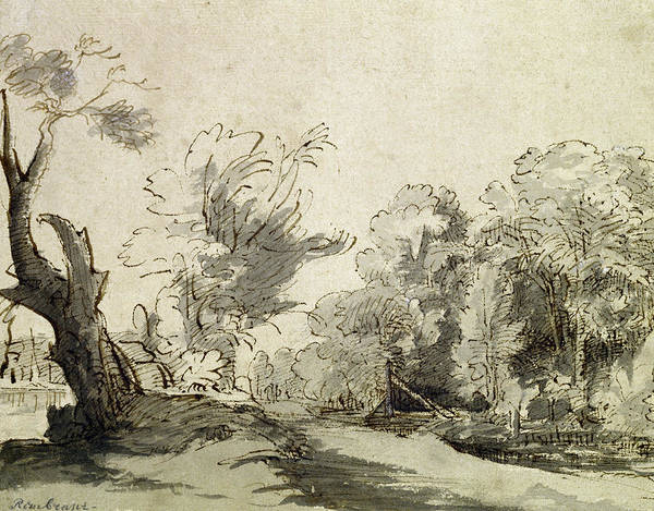 Woods Drawing - Landscape With A Path, An Almost Dead Tree On The Left And A Footbridge Leading To A Farm by Rembrandt Harmensz van Rijn