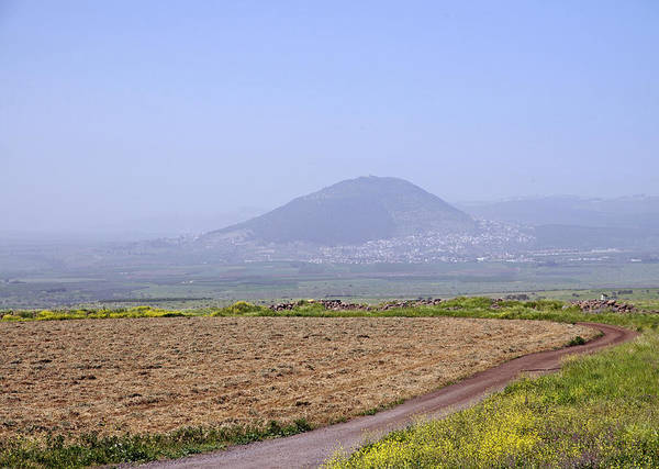 Photograph - Landscape With Mount Tabor by Dubi Roman