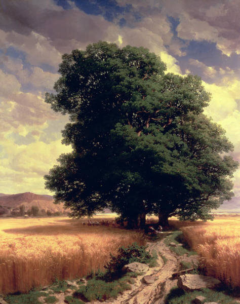 Corn Wall Art - Painting - Landscape With Oaks by Alexandre Calame