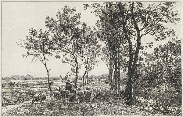 Herd Drawing - Landscape With Shepherd And Flock Of Sheep by Julius Jacobus Van De Sande Bakhuyzen