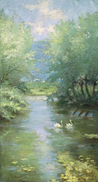 Galleria Painting - Landscape With Swans by Guido Bertarelli