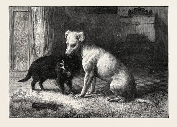Wall Art - Drawing - Landseers Pet Dog Tiney And Pet Cat by English School