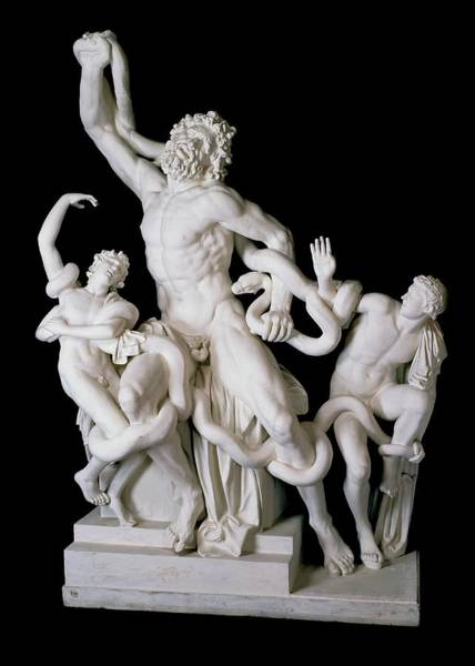 Seer Wall Art - Photograph - Laocoon Group by Ashmolean Museum/oxford University Images