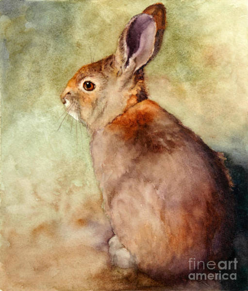 Wild Rabbit Painting - Lapin by Bonnie Rinier
