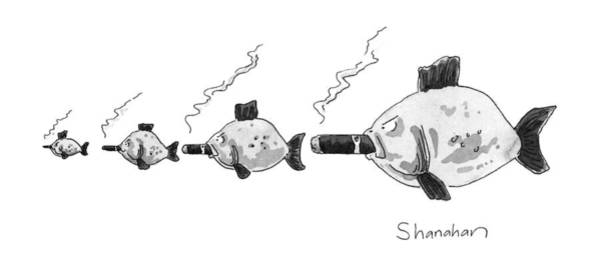 No Smoking Wall Art - Drawing - Large Fish Is Smoking A Fat Cigar. Smaller Fish by Danny Shanahan