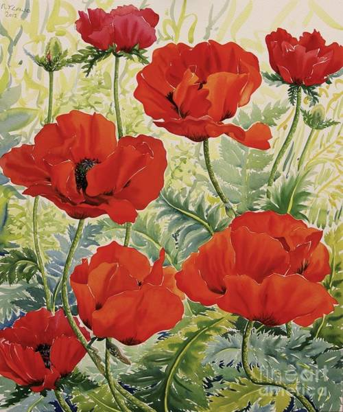 Florist Wall Art - Painting - Large Red Poppies by Christopher Ryland