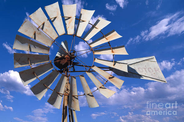 Large Windmill Art Print