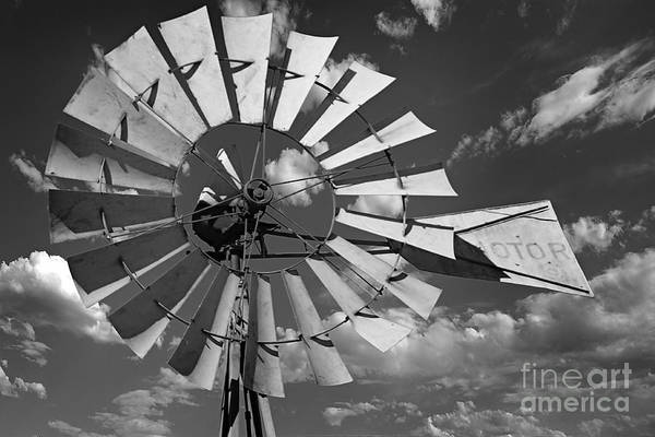 Large Windmill In Black And White Art Print