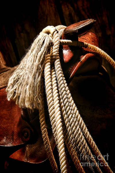 Roping Photograph - Lariat On A Saddle by Olivier Le Queinec
