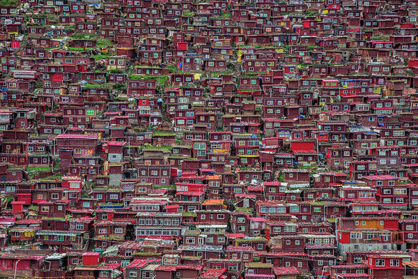 Wall Art - Photograph - Larung Gar by Tianyu
