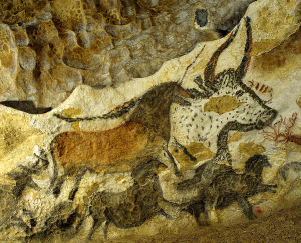 World Heritage Site Painting - Lascaux Cave Painting by Jean Paul Ferrero and Jean Michel Labat