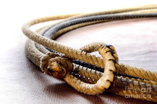 Roping Photograph - Lasso Hondo Loop by Olivier Le Queinec