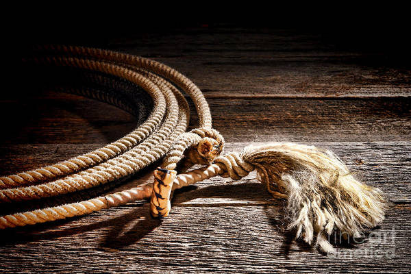 Roping Photograph - Lasso by Olivier Le Queinec