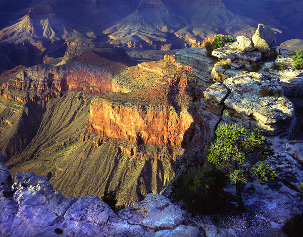 Photograph - Last Canyon Light by Ray Mathis