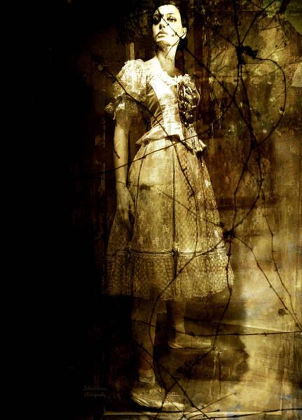 Talent Photograph - Last Dance by Julie Palencia