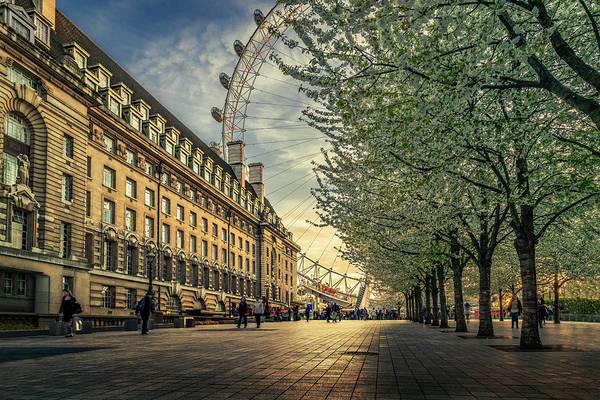 Uk Photograph - Last Daylights At The London Eye by Nader El Assy