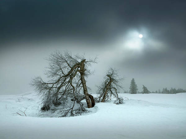 Seasonal Photograph - Last Days Of Winter by Nicolas Schumacher