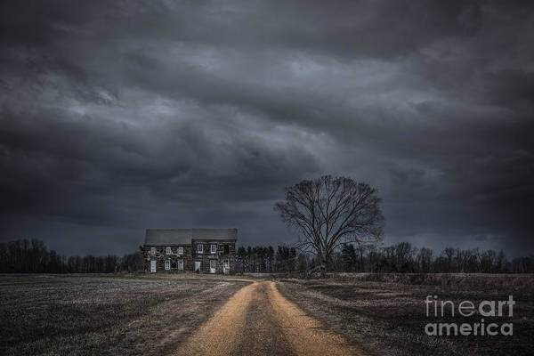 Last Photograph - Last House On The Left by Michael Ver Sprill