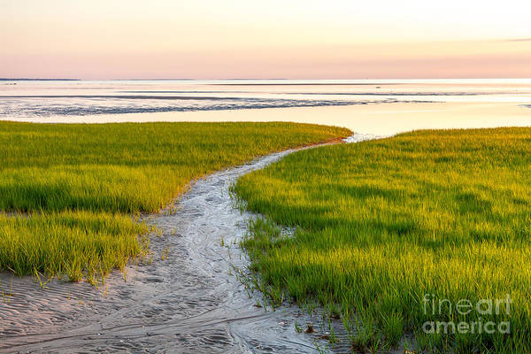 Wall Art - Photograph - Last Light At First Encounter Beach 1 by Susan Cole Kelly
