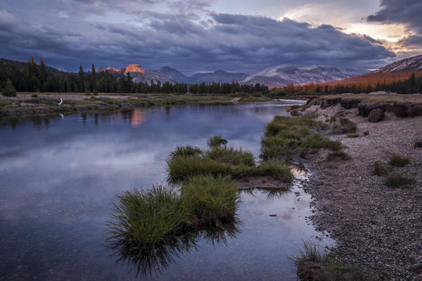 Photograph - Last Light On Lembert Dome by Cat Connor