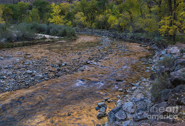 Wall Art - Photograph - Last Light On The Virgin River by Sandra Bronstein