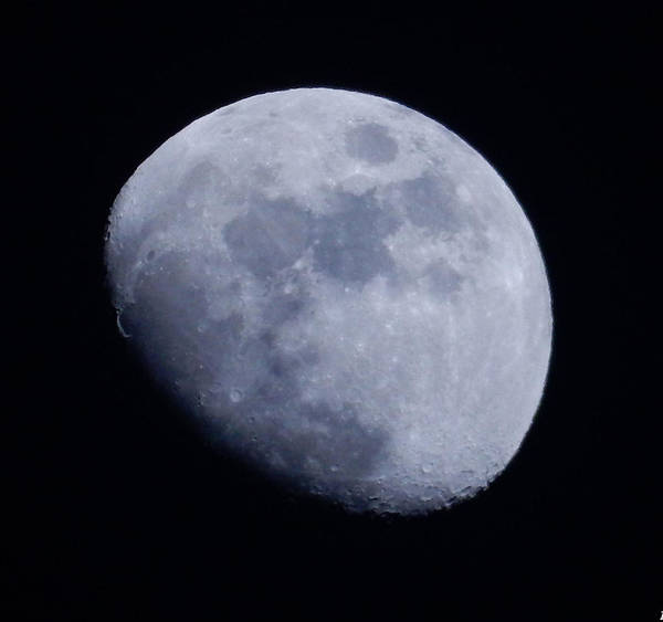 Photograph - Last Moon Of 2014 by Pamela Walton
