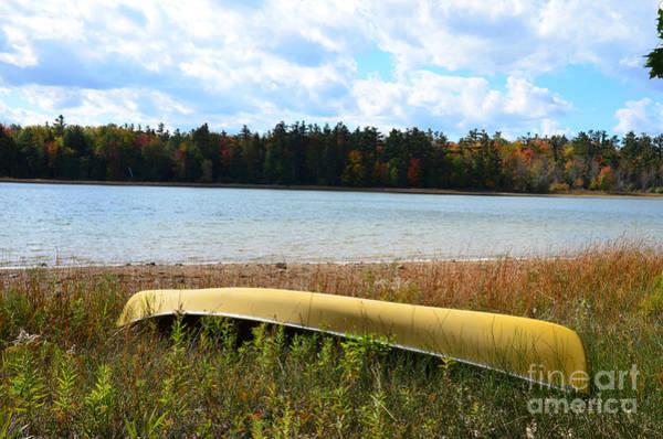 Photograph - Last Of Summer by Randy J Heath