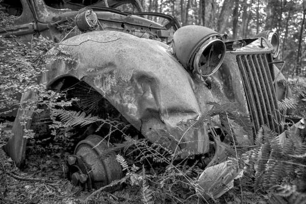 Photograph - Last Ride by Sara Hudock