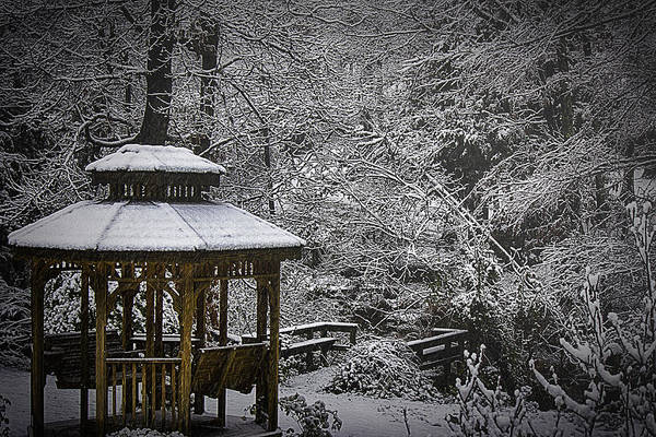 Photograph - Last Snow by Barry Jones