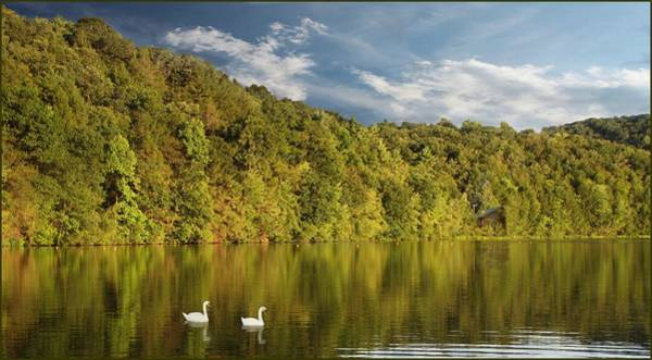 Photograph - Late Afternoon At The Lake by David Dehner