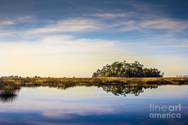 Marsh Photograph - Late Day Hammock by Marvin Spates