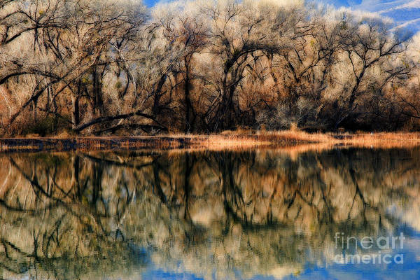 Late December Reflection At Dead Horse Art Print