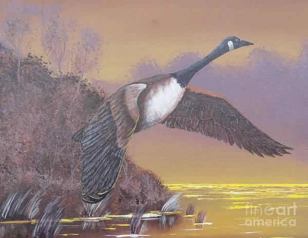 Painting - Late Flight by Bob Williams
