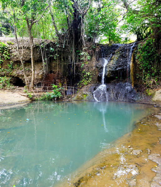 Wall Art - Photograph - Latille Waterfall And Garden - St. Lucia by Brendan Reals