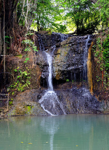 Wall Art - Photograph - Latille Waterfall - St. Lucia by Brendan Reals